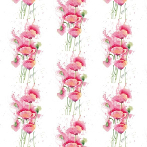 Poppies_