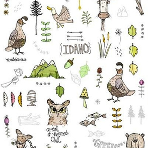Idaho spring 1