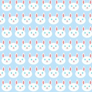 Blue Bunnies - Bunny Hop