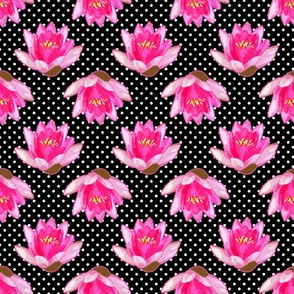 Pink Water Lily Black White Polka Dots