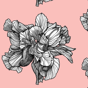 HibiscusSinglePattern_Blossom