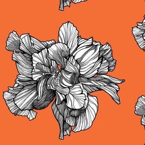 HibiscusSinglePattern_Tangerine