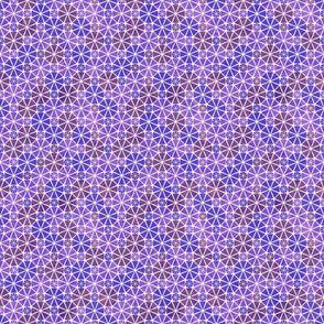 Geodesic_purple_pattern