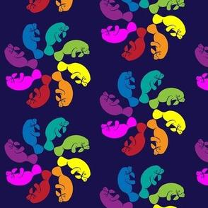 Rainbow Manatee Swirl
