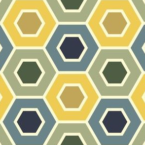 06230597 : holey hexagons : bayeux