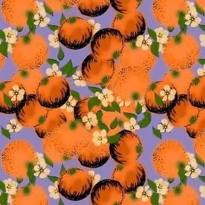 I-spy oranges