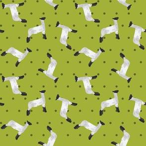 Polka Dot Lamb - Lime