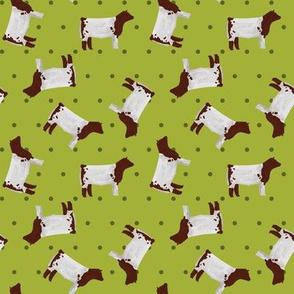 Polka Dot Shorthorn Steer - Lime