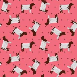 Polka Dot Shorthorn Steer - Pink