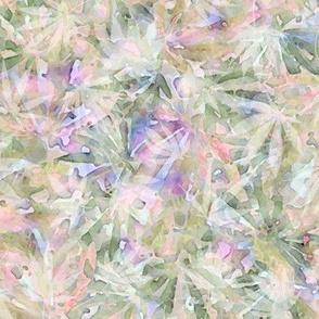 Cannabis Hope