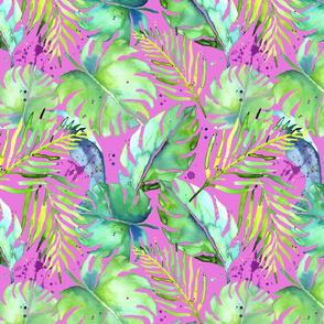 tropical plants on magenta