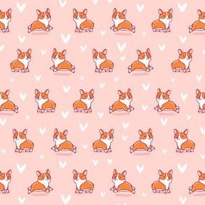 Cute corgi pink pattern