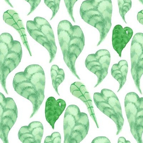 17-07E Tropical Green Leaf Leaves Lemon Tree Plant_Miss Chiff Designs