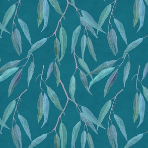 Eucalyptus leaves on teal