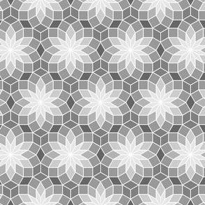 06245557 : SC3Vrhomb : greyscale