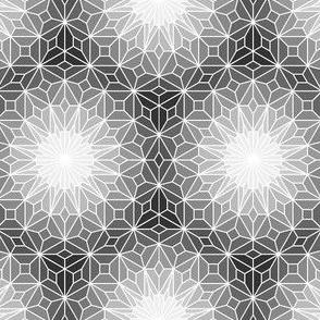 06245577 : SC3Vgems : greyscale