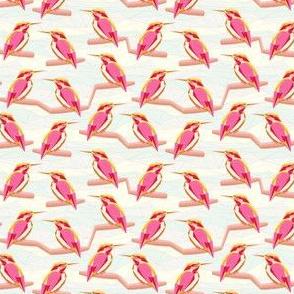 geodesic kingfisher pink