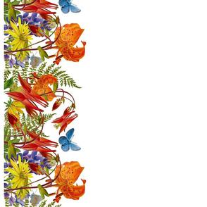 wildflower border