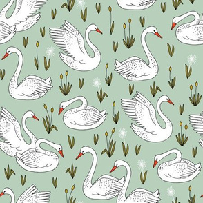 White swans on mint water