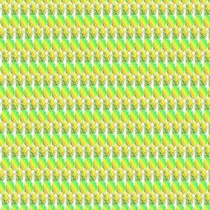 piña colores