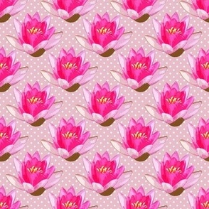 Pink Water Lilies White Dots on Pink