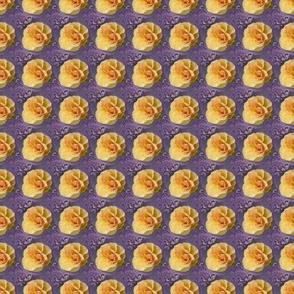 Yellow Roses on Purple Swirls, Small