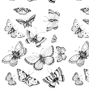 butterfly_template_fabric