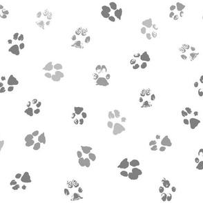 Paws Gray Multi