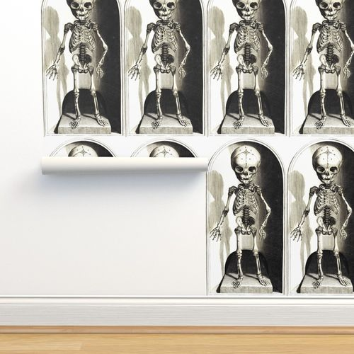 Wallpaper Skulls Bones Skeletons Anatomy Gothic Death Vintage Monochrome Black White Antique Children Child