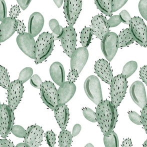 green paddle cactus