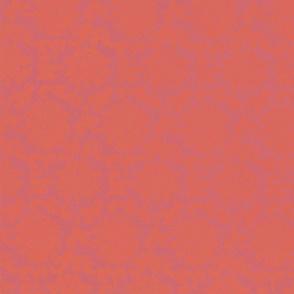 AC-red-persimmon-bg