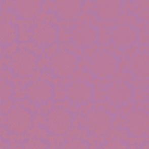 AC-pink-lavender-bg