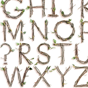 3D Twigs Alphabet - medium