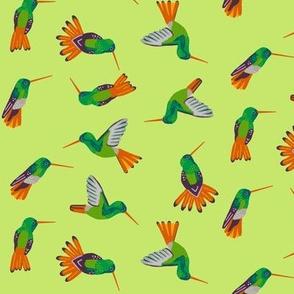hummingbird scatter [celery]
