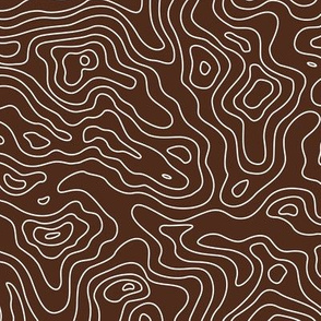 Topographic Map Brown and White Stripes Wave Elevation Topographic Topo Map Pattern