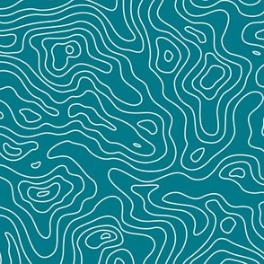 Dark Teal and White Stripes Wave Elevation Topographic Topo Map Pattern -KC