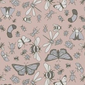 Study Of Insects  // by Sweet Melody Designs