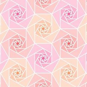 06284735 : geo rose garden : warm