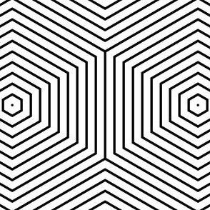 06284776 : R6V hexagonal echoes