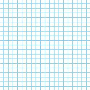 Lined Paper- Graph Paper