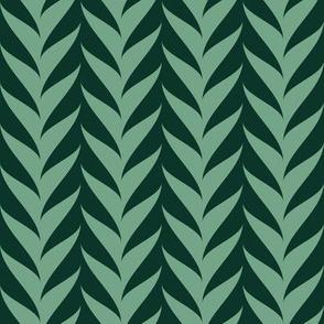 06291980 : sine vine : succulent