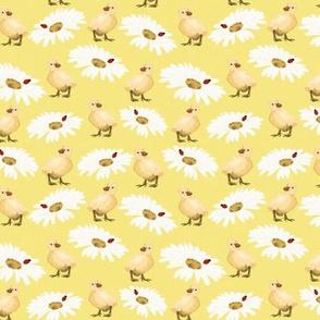 Baby ducks on yellow with Daisy's by Salzanos