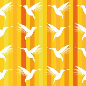 busy little hummingbirds #05