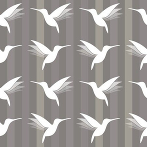 busy little hummingbirds #06