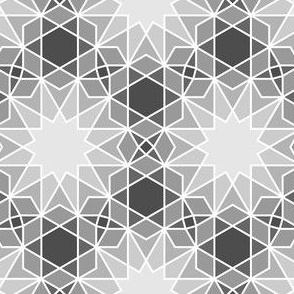 06300537 : SC64V2and4 : greyscale