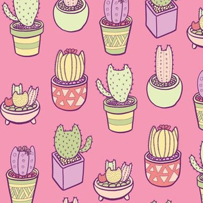 Cactus Cats in Pink