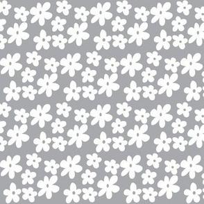 Grey Gray Daisy Flowers