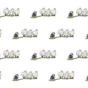 Dog Herding Sheep