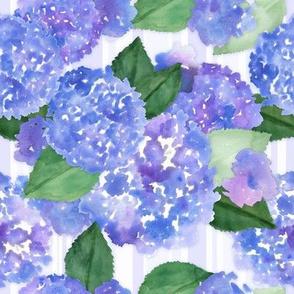 Blue Hydrangeas and Stripes