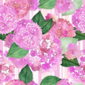 Pink Hydrangeas and Stripes
